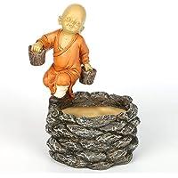 QTRFP Suculento de Dibujos Animados Tiesto Monk Poco
