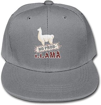 TCJX Llama I Just Really Like Llamas Ok Mesh Baseball Caps Girls Trucker Hat Sky Blue