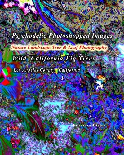 Psychodelic Photoshopped Images Nature Landscape Tree & Leaf Photography: Wild California Fig Trees Los Angeles County, California (Fig Trees California)