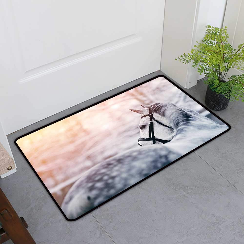 TableCovers&Home Entrance Door Mat, Horse Decor Decorative Rugs for Kitchen, Portrait of Gray Sports Stallion in Winter Sunset Scenery Purebred Mare (White Black Yellow, H32 x W48)
