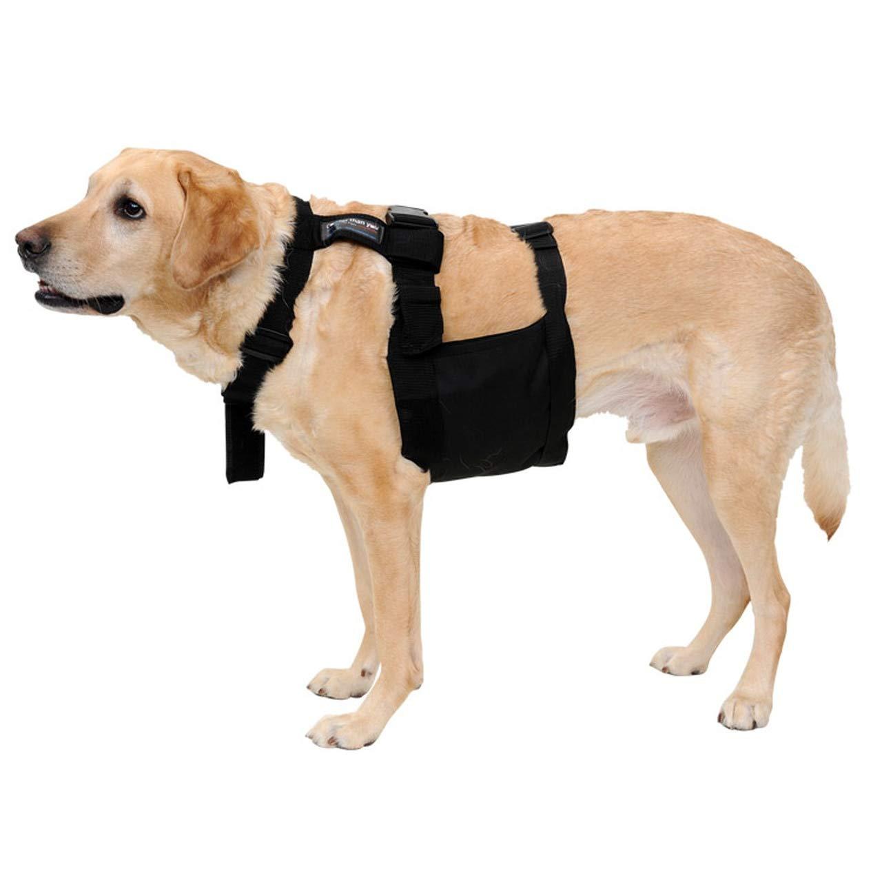 Glacier Tek Chilly Dog Cool Vest with nontoxic Cooling Packs