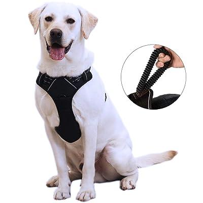 ANWA Dog Walking Harness No Pull