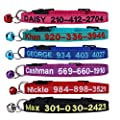 Flowertown Cat Collar Personalized Embroidered Nylon Cat Id Collars With Bell Custom Text With Pet Name And Phone Number