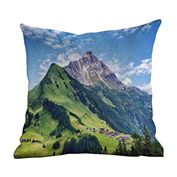Amazon.com: Funda de almohada mate con diseño de caballo de ...