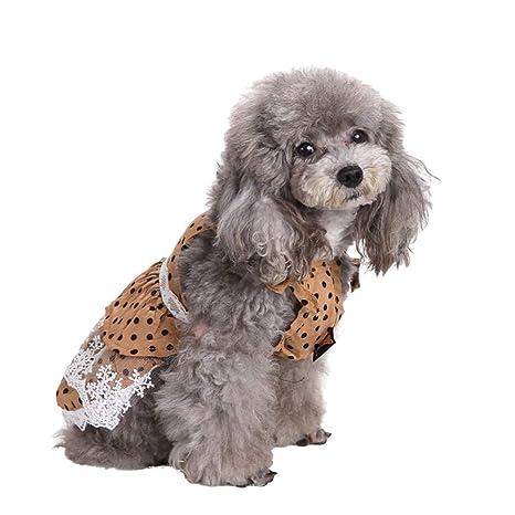 bismarckbeer Vestido para Cachorro, Encaje de Lunares para Perros y Gatos, Vestido de Princesa