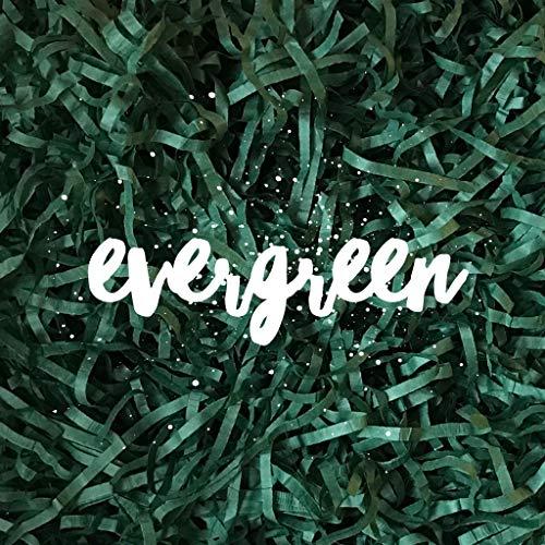 (Evergreen Shredded Tissue Paper Shred Hamper Gift Box Basket Filler Fill Baby Shower Easter Wedding Party Christmas Decor)
