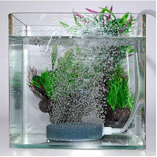 Tokou Difusor de burbujas para acuario, bomba de aire, pecera, pecera, acuario, estanque de oxígeno hidropónico, 4 cm: Amazon.es: Productos para mascotas
