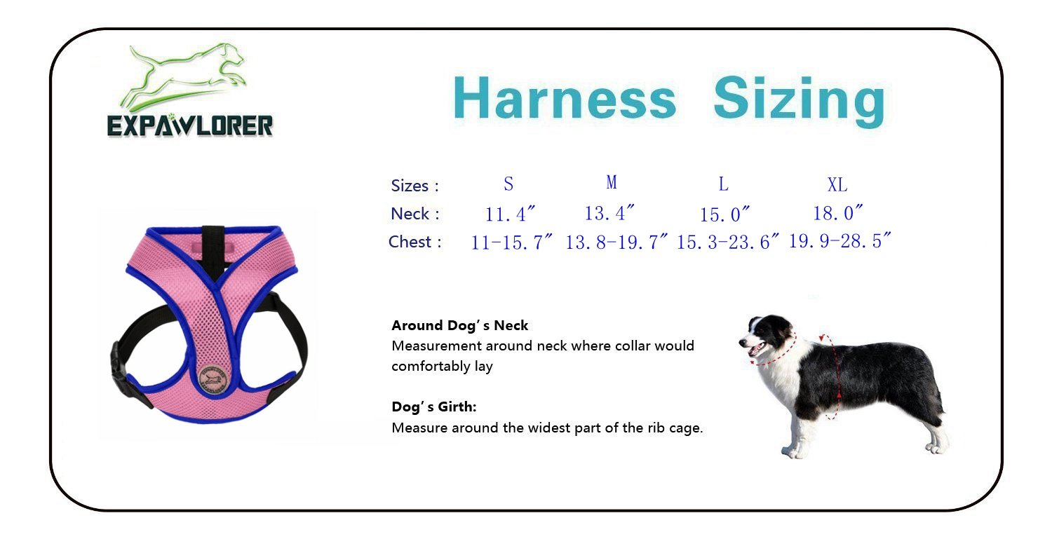 Amazon choke free small dog harness x design adjustable amazon choke free small dog harness x design adjustable soft mesh summer vest fit chest girth 13 16 blue pet supplies pooptronica Images