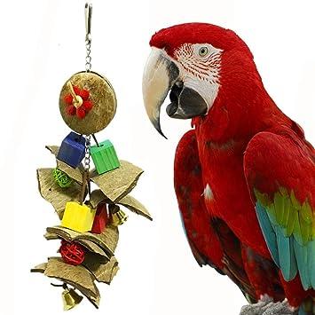 Spielzeug Vögel Vogelspielzeug Boot Schaukel Papage für Maus Papagei Vogel Katze Hamster