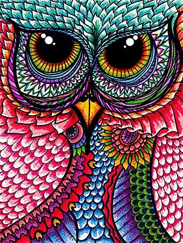 Amazon Com Kotart Round Diamond Painting Kits For Adults 16x20 40x50cm Full Drill Colorful Owl Diy Diamond Cross Patterns Set With Tools Accessories Supplies