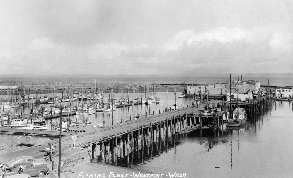 Westport、ワシントン – Aerial View Of Harborと釣りFleet 36 x 54 Giclee Print LANT-10952-36x54 36 x 54 Giclee Print  B01MG39RPB