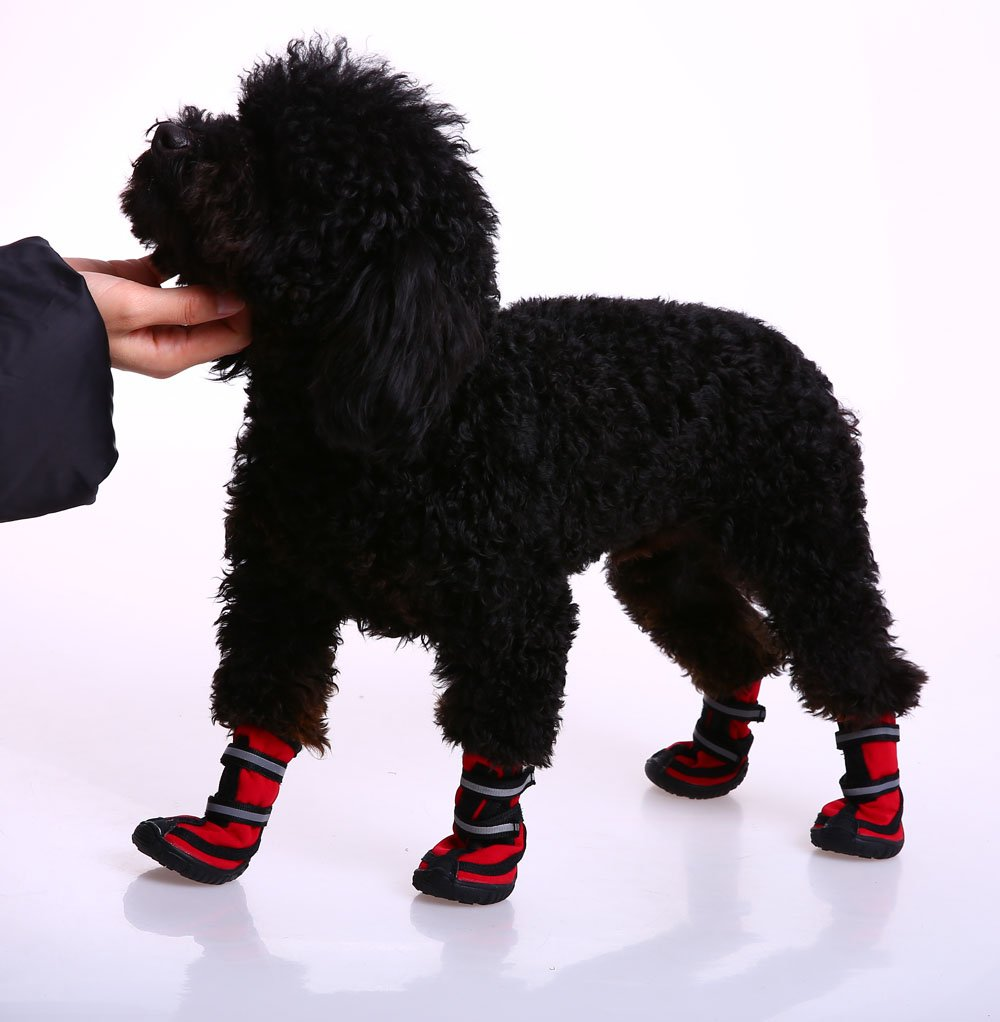 QBLEEV Pet Shoes Boots Small Dog Booties Waterproof Breathable Paw Protectors with Reflective Touch Fasten and Rugged Anti-Slip Sole for Medium Large Size Dogs (XS, Red) by QBLEEV