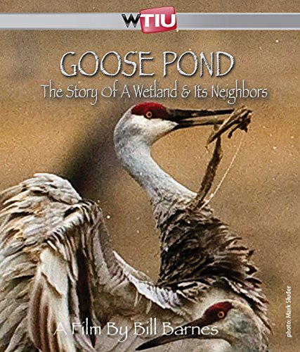 Goose Pond: The Story of a Wetland and Its Neighbors - Goose Pond