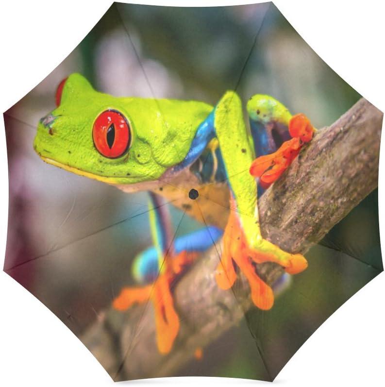 Cute Red Eyed Tree Frog Folding Rain Umbrella Parasol Windproof Travel Sun Umbrella Compact
