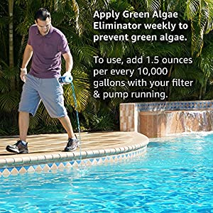 Clorox Pool&Spa Green Algae Eliminator2 32 oz