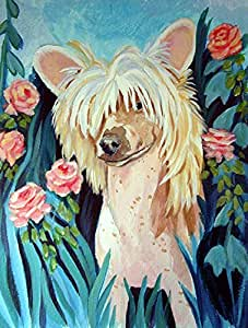 Caroline's Treasures 7087GF Chinese Crested Flag, Small, Multicolor
