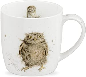Wrendale by Royal Worcester What a Hoot Owl Single Mug