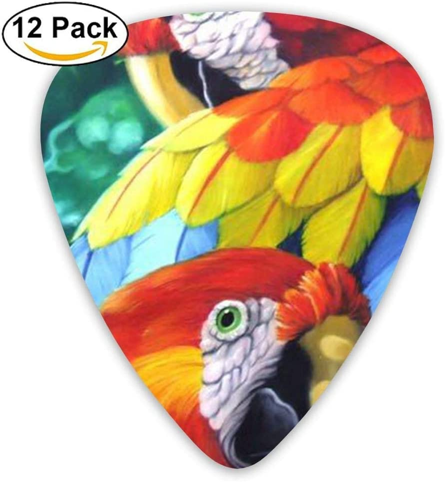 Black Custom Poll Parrot Bird Jazz Acoustic Guitar Picks 12 Packs,0.46/0.73/0.96 Mm Guitar: Amazon.es: Instrumentos musicales
