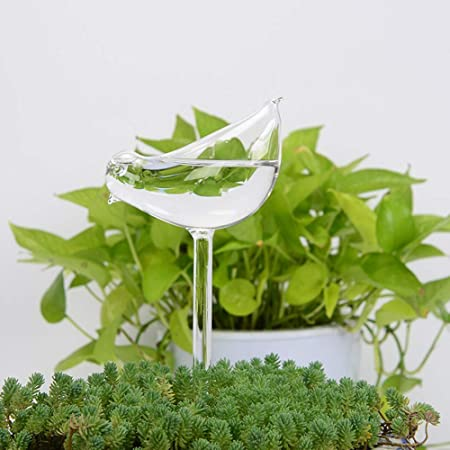 Plant Container Accessories Patio, Lawn & Garden Escolourful Plant ...