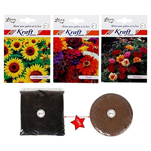 Sunflower Dwarf and Zinnia and Portulaca Flower Seeds with Free 200 gm Organic Manure & Agropeat 100 gm
