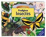 Prodigieux insectes