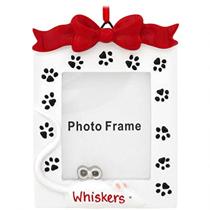 Amazon.com - Cat Frame Personalized Christmas Tree Ornament - Single ...