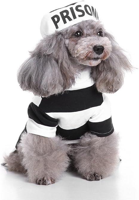 Zunea - Disfraz para perro, gato y gato con sombrero, perro, perro ...