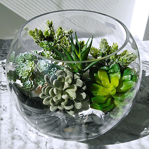 Winlyn 6 Pcs Unpotted Fake Succulents Assorted Faux