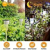 AVEPIO Solar Lights Outdoor, Solar Garden Lights, Solar Pathway Lights, Outdoor Landscape Lighting for Lawn, Patio, Yard, Walkway, Driveway (12 Pack)