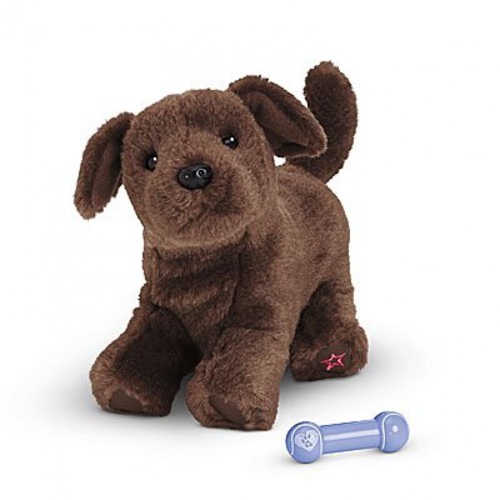 Amazon.com: American Girl - Chocolate Lab Puppy - Truly Me 2015 by ...