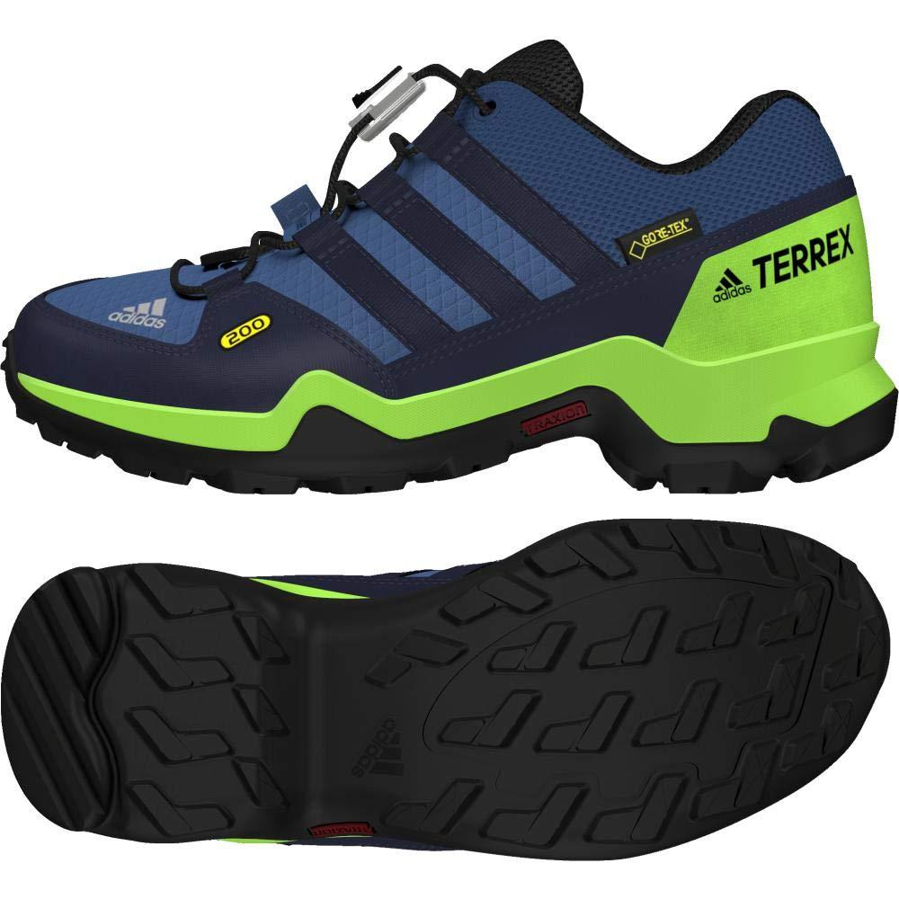 Bleu (Azretr   Macouriri   Limsol 000) 30 EU adidas Terrex GTX K, Chaussures de Randonnée Basses Mixte Enfant