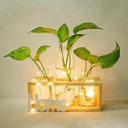Ysoom Glasvase Flora Glas Vase Verschiedene Gr/ö/ßen mit Retro Solid Holz St/änder Hydrokultur Pflanzen Home Garten Hochzeit Dekor Desktop Glas /Übertopf Vase
