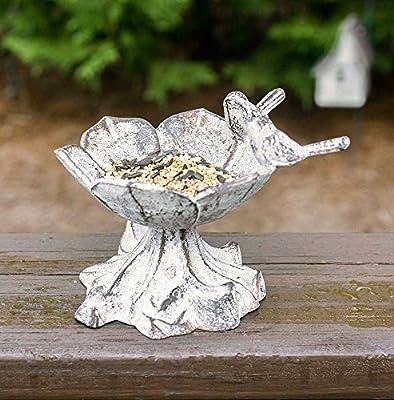 Incroyable Amazon.com : Cast Iron Daisy Tabletop Birdbath/Bird Feeder/Decorative Dish  : Garden U0026 Outdoor