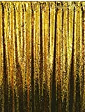 ShinyBeauty Mermaid-Sequin Curtain Backdrop-Gold&Black-10FTx10FT,Reversible Sequin Fabirc Photography Backdrops For Photo/Wedding/Party/Event/Prom/Birthday