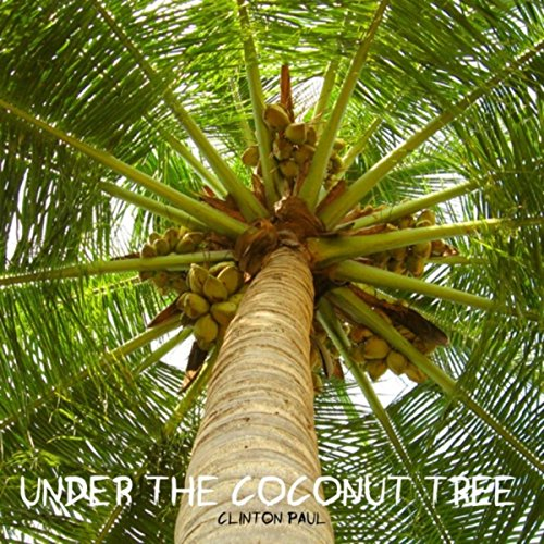 under the coconut tree by clinton paul on amazon music amazon com