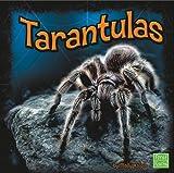 Tarantulas, Molly Kolpin, 1429645202