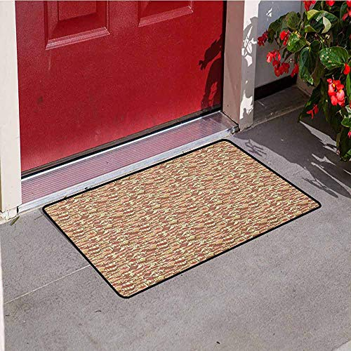 Abstract Inlet Outdoor Door mat Town Houses Pattern with Cool Tiled Roof Urban Architecture City Life Catch dust Snow and mud W15.7 x L23.6 Inch Cream Coral Chocolate