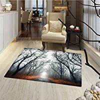 Mystic House Decor Floor Mat for kids Road Towards the Light Cloudy Autumn Sky Trees Golden Leaves on the Ground Bath Mat for tub Bathroom Mat 18x30 Gray Red