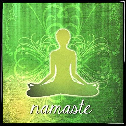 Amazon.com: Posters: Yoga Poster Art Print - Namaste (16 x ...
