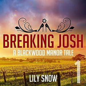 Breaking Josh (Femdom Erotica) Audiobook