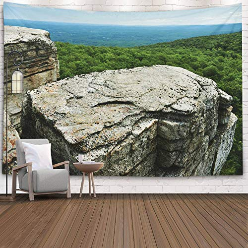EMMTEEY Dorm Tapestry, Tapestries Décor Living Room Bedroom for Home by Printed 80X60 Inches for Rocks and View to The Valley State Park Reserve Upstate During Summer Time at Minnewaska Ny,Gold Black