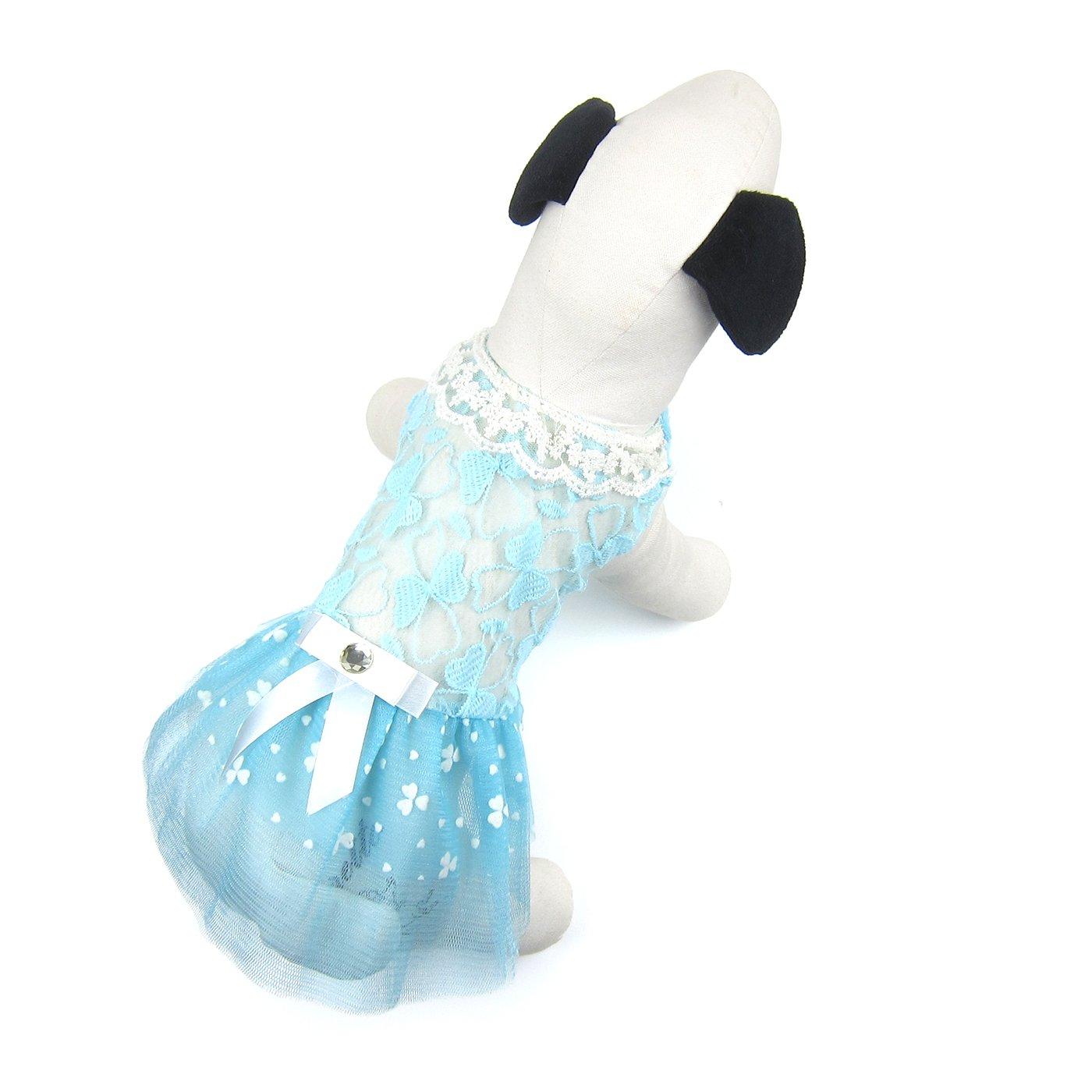 bluee XL bluee XL Alfie Pet Corey Lace Party Dress color  bluee, Size  XL