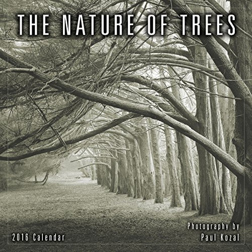 Nature of Trees 2016 Mini Calendar