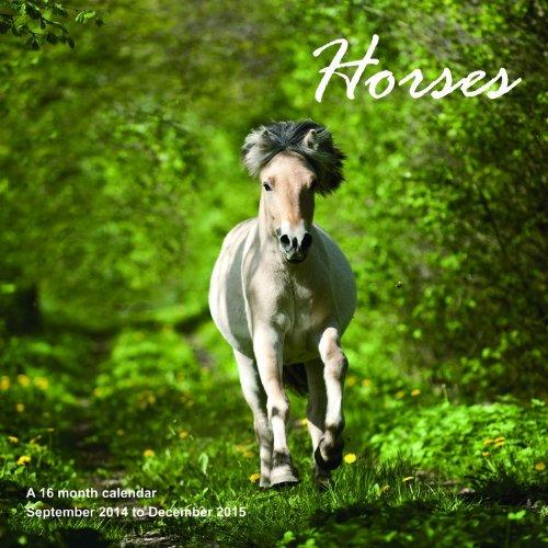 Horses Calendar - 2015 Wall calendars - Animal Calendar - Monthly Wall Calendar by Magnum by Magnum Calendars