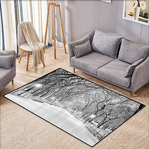 Bath Rug Winter Decor View of Central Park in Winter Snowy Trees and The Walkway Digital Print Black and White Non-Slip Backing W5'2 xL3'2