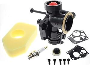 Carbhub 795477 Carburetor for Briggs Stratton 795469 794147 699660 794161 498811 Carb with 698369 Air Filter