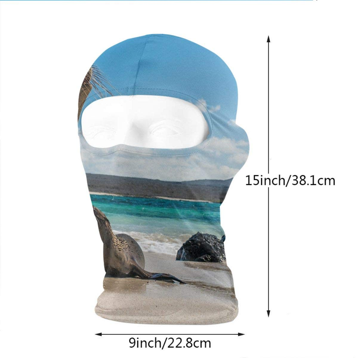 BEIKE6/&MIAN Sea Lion Balaclava-Ski Mask for Men Women Mountain Climbing Face Mask Hood