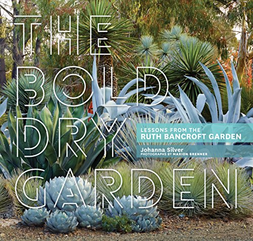 the-bold-dry-garden-lessons-from-the-ruth-bancroft-garden