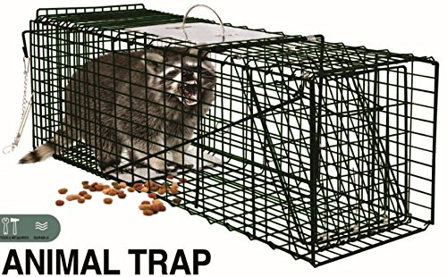 LIFE Home Extra Humane Large Live Animal Professional Heavy Duty One Door Raccoon, Groundhog, Opossum, Squirrel and Cat Trap - 32