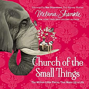 Amazon com: Church of the Small Things Audio Bible Study
